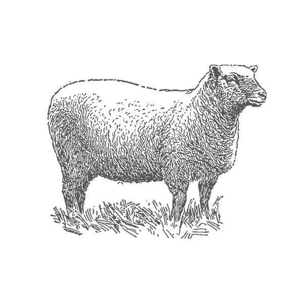 Butchers, Sudbury, Suffolk, Jamies Meat Inn