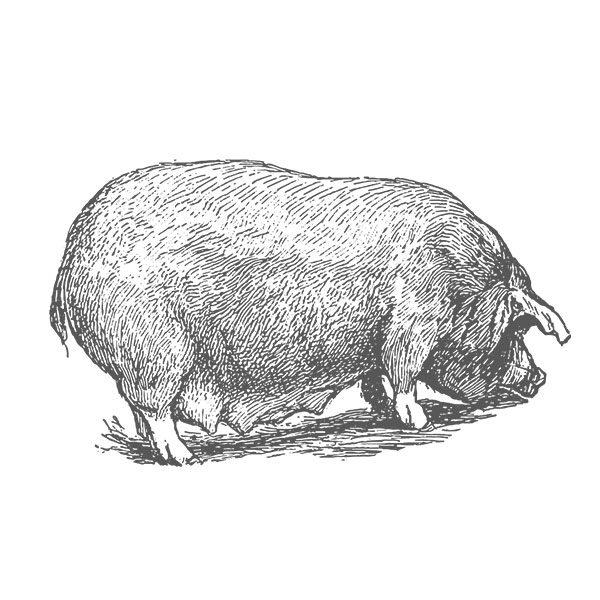 Pork, Sudbury, Suffolk, Jamies Meat Inn